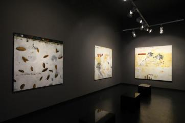 Costantini Art Gallery. Milano