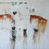 La pell dels nius ( La piel de los nidos ). 200 x 200 cm. Mixta sobre tela. 2014